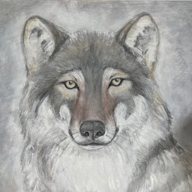 wolf drawing by Nanda Currant